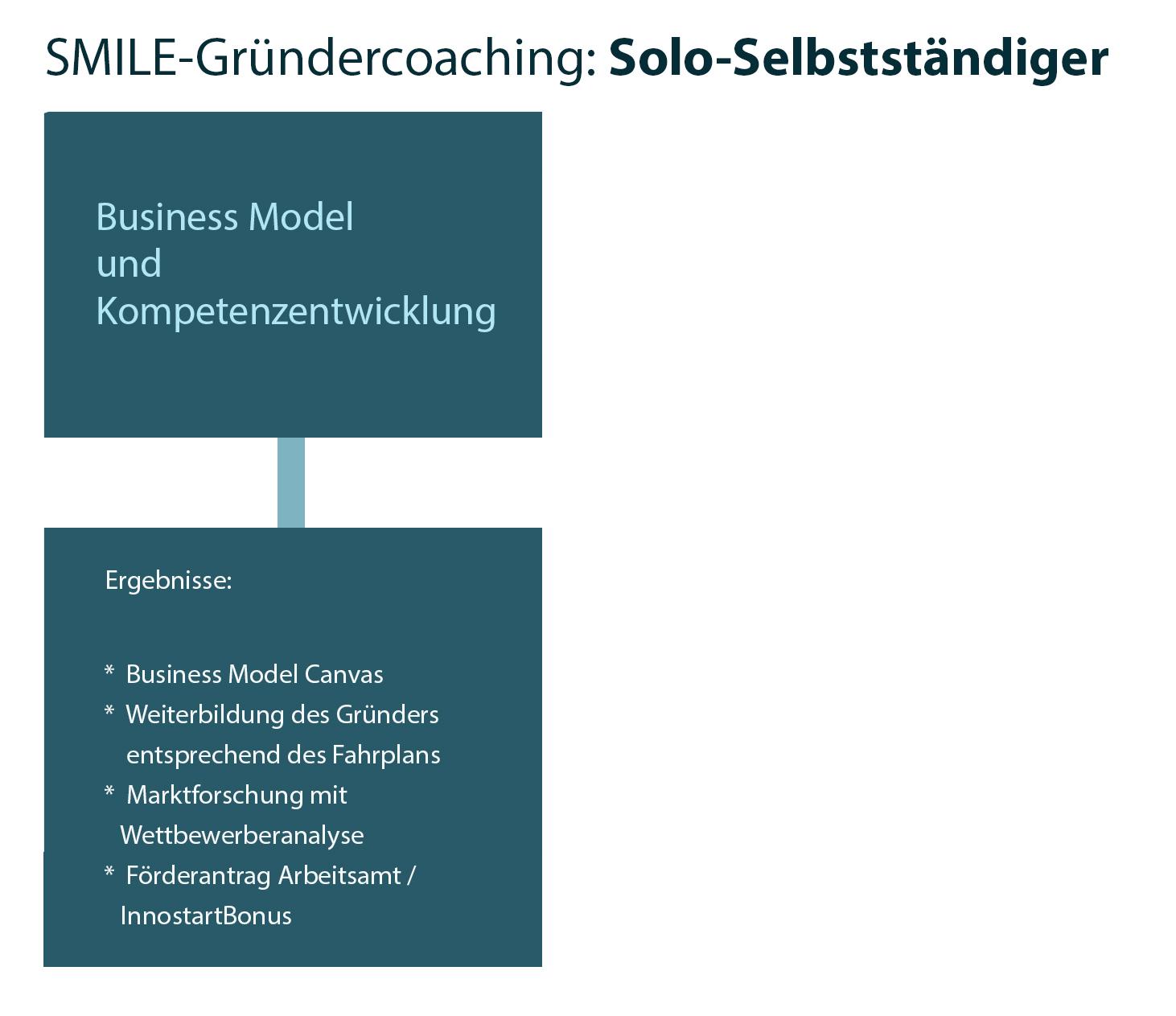 SMILE-Coachingprozess Grafik